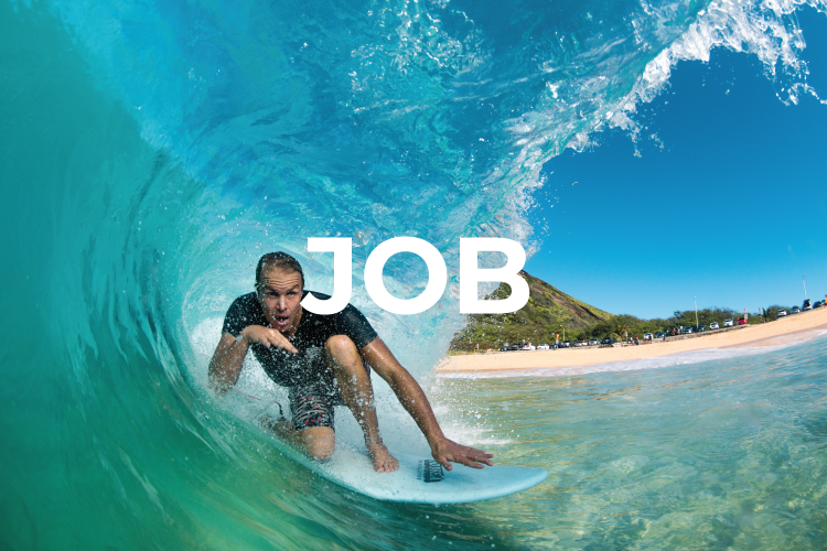Catch surf job
