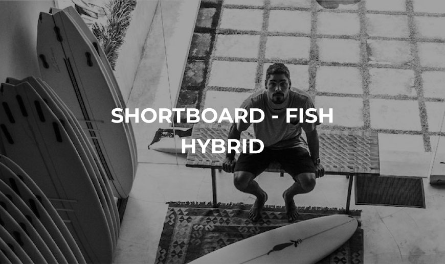 Shortboard fish hybrid